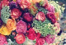 Bouquets  / by Livvey Rurup III