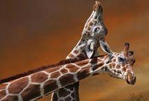Animal Love - Giraffe❤ / by Tracey Jackson