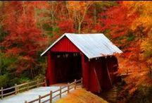 covered bridges / by Allison Altmann