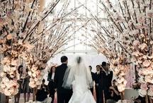 Wedding - Decor / by Rachel Alexander