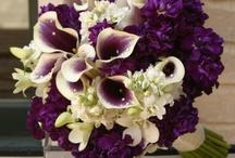 Wedding - Bouquets & Cakes / by Rachel Alexander