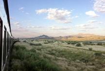 Namibia Safari / by Rovos Rail Tours