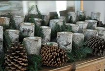 AA Brown/Autumn: tablescapes/weddings / by Deb Brinegar