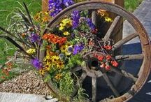 Gardening  / by National Cowboy & Western Heritage Museum