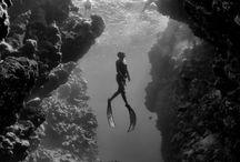 Mergulhos / Mergulhos no mar.