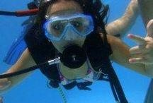 Alphadivers / Mergulho, cursos e viagens para mergulho. Conheça os cursos de mergulho da Alphadivers/IANTD e mergulho adaptado HSA