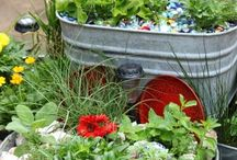 gardening and yard ideas / by Sandy Carter