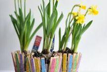 Attività primavera - Spring / Attività, materiali da scaricare, esperimenti e giochi sulla primavera