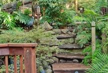 Lemongrass Cottage Garden Ideas