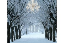 winter happiness / by Katherine Lange