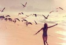~Bird Love~ / by Mindy