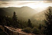 West Coast Road Trip / by Ashlie Bostick