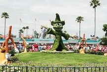 Disney Parks / All About the Disney Parks