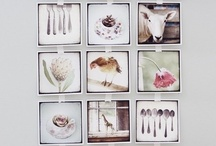 picture display / by frieda 's favorites