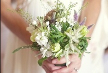 bridal bouquet / by frieda 's favorites