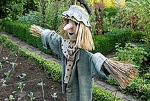 Rustic Scarecrows / by Drought Smart Plants