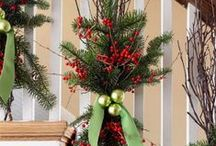 Holidays, Etc. / Holiday deco ideas/food / by Denise Smith