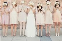 wedding blush / by frieda 's favorites