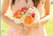 wedding coral / by frieda 's favorites
