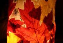 Autumn CRAFTING / by Diane Martlaro