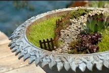 Bird Bath Garden Planters / Got a cracked birdbath?  Don't worry - that just adds drainage; plant it! / by Drought Smart Plants