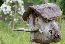 Rustic Bird Houses / Birds need places to live too - why not make it rustic?  There are two kinds of rustic bird houses and it's important to make the distinction; there are functional ones decorated in a rustic fashion, then there are purely decorative ones that are unsuitable for nesting in - but boy, are they cute! / by Drought Smart Plants