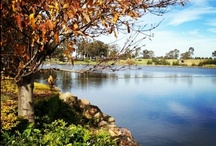 The View / by HunterValley