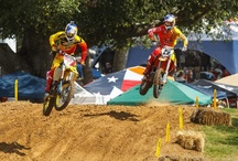 Racing: Bikes - Motocross