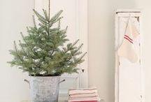 CELEBRATE // Christmas / I'm dreaming of a White Christmas