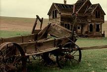 On the Farm / by Kim McGehee Johnston