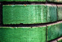 Green / by Susan Ryder Paget