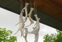 Projects / Fun and rustic projects for a rainy day.
