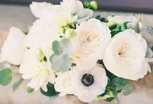 Flowers / Beautiful flower arrangements. Just because to weddings.