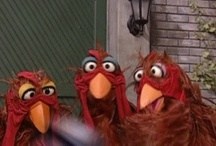 Chicken Muppets / by Austin Coop Tour