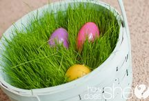 Easter / by Pink Flippert
