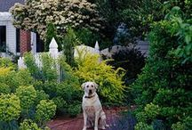 Gardens - April showers bring May flowers / Flowers, veggies, and trees...oh my! All things gardening, landscaping, outdoors, decks, outdoor entertainment