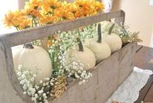 fall inspiration / Fall themed decor and inspiration for the cottage or farmhouse.