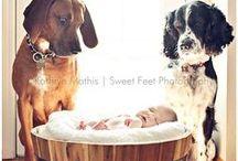 Baby Parks! :) / by Felecia Parks
