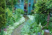 Fantasy Home & Garden / by Felicity-Ann Stevens