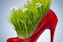 Amazing Gardening! / by Michele Weiland