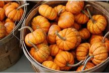 Thanksgiving party / Thanksgiving party ideas