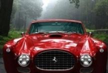Design:  Auto Collection
