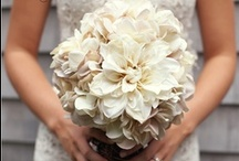 Wedding Inspiration & Help