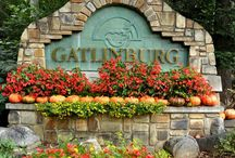 Gatlinburg, TN / by Ashley