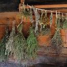 Drying and Dehydrating / Drying herbs and dehydrating food