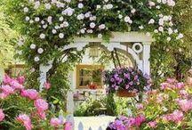 Greenery, Flowery, Outside in my Garden-y?