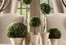 Oh Topiary, How I Love Thee