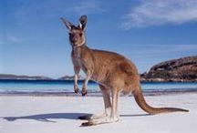 Australaisa - Australia / by Kimberly Wies