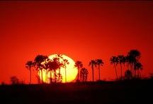 Africa - Zambia / by Kimberly Wies