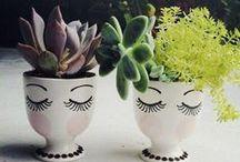 décor | gardening